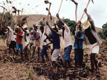 Haitian peasants